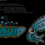 How to install and configure Squid Proxy Server on CENTOS/RHEL 7